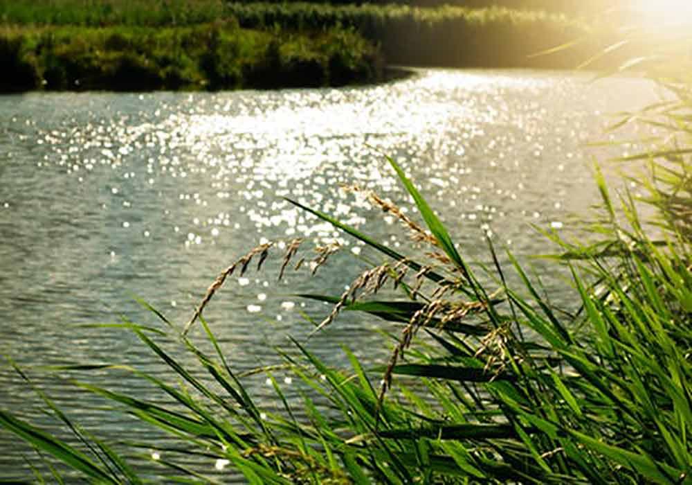camping dordogne bord de riviere